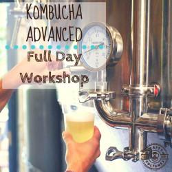 Kombucha Advanced Full Day Workshop - 26 October 2019